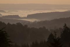 een deken van mist ligt over de Ardennen