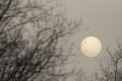 Door saharazand kon je de zon fotograferen zonder verblind te worden