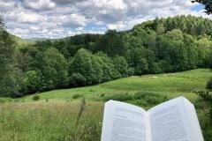 lekker op zondag een boek lezen midden in de natuur