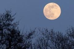 s avonds was de maan al goed zichtbaar en gloeide geel