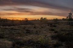 zonsondergang op de heide