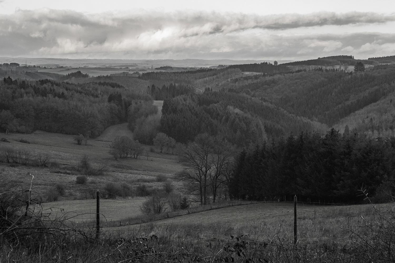 het dal van Wigny