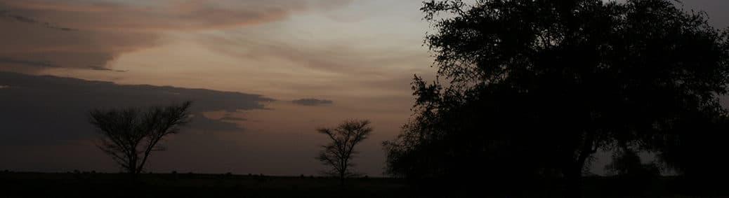 Sahel avond
