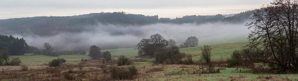 Wigny in de mist